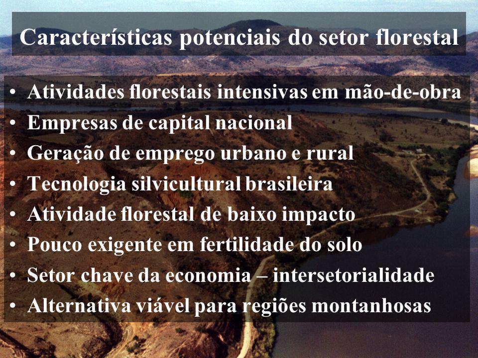 Características potenciais do setor florestal