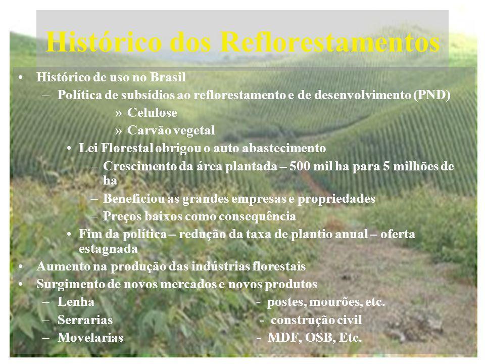 Histórico dos Reflorestamentos