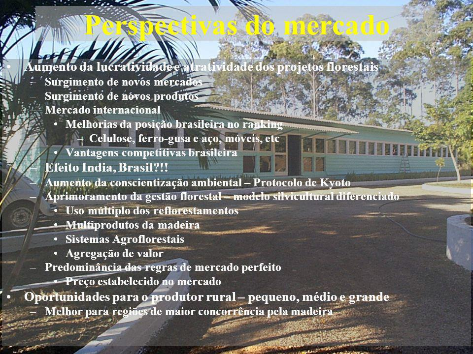 Perspectivas do mercado