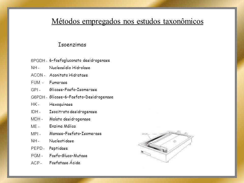 Métodos empregados nos estudos taxonômicos