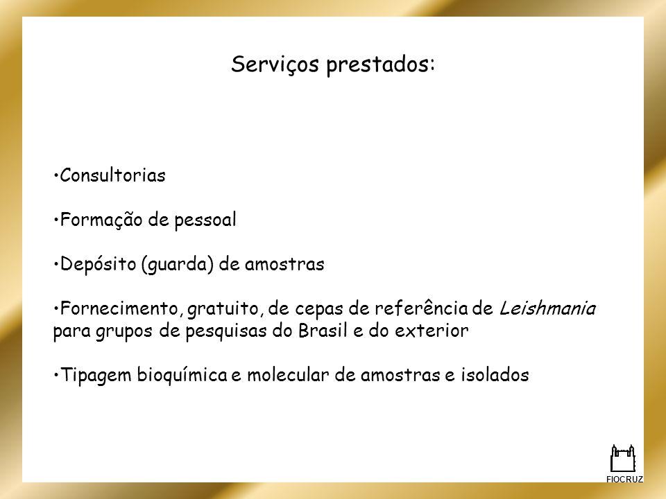 Serviços prestados: Consultorias Formação de pessoal