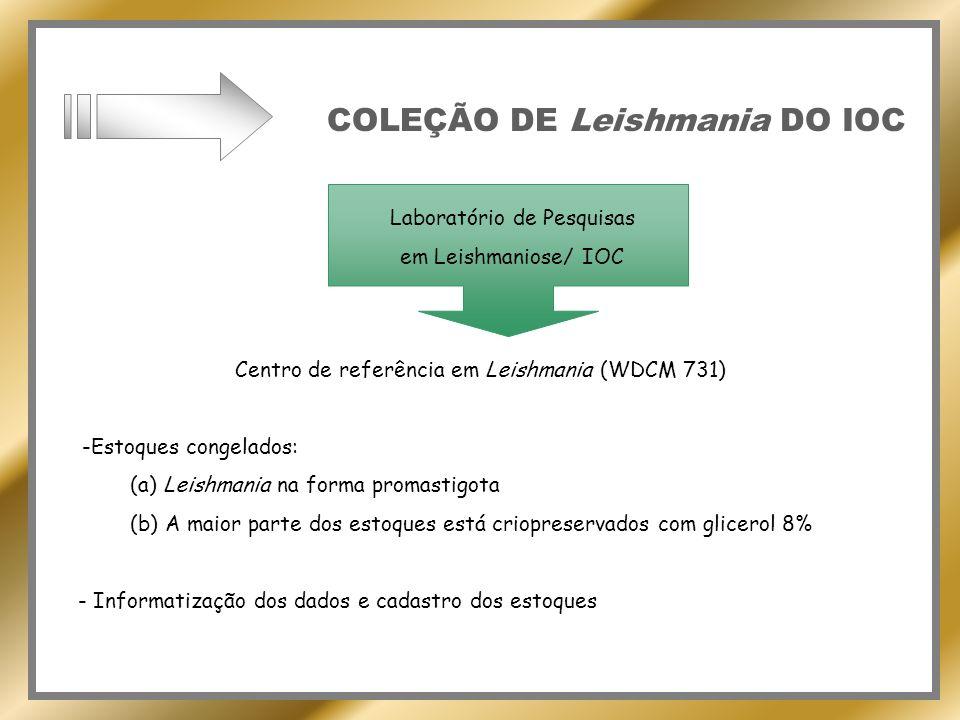 COLEÇÃO DE Leishmania DO IOC