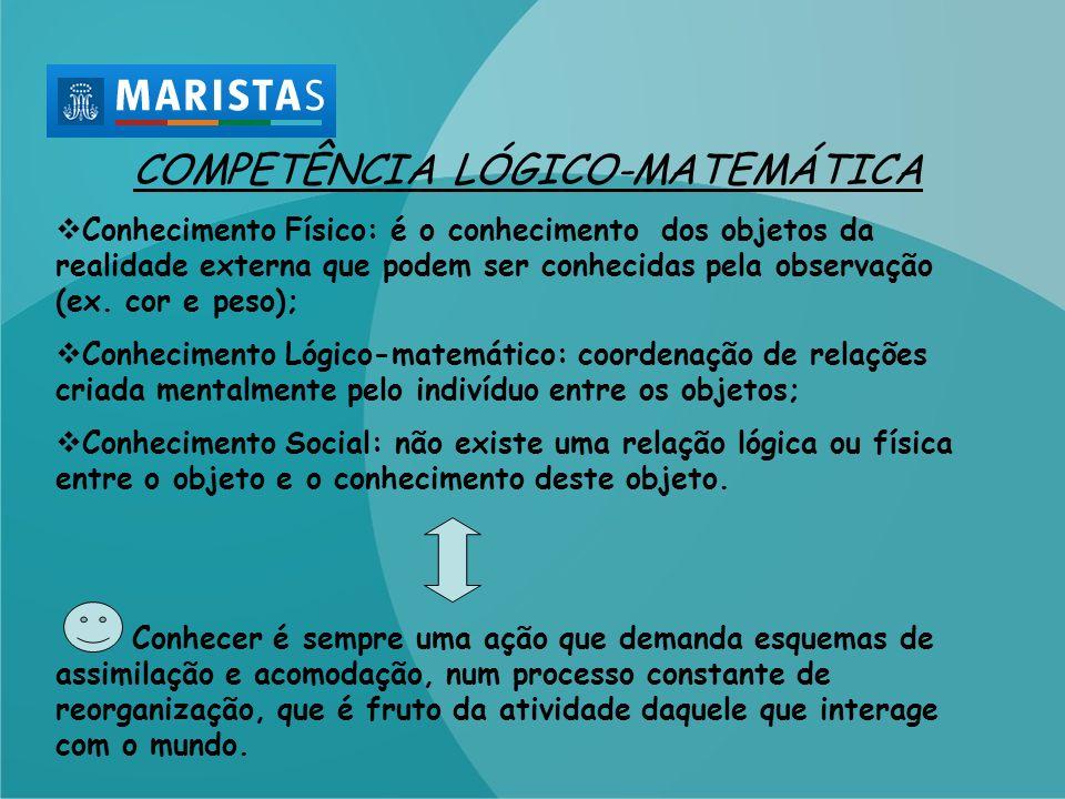 COMPETÊNCIA LÓGICO-MATEMÁTICA