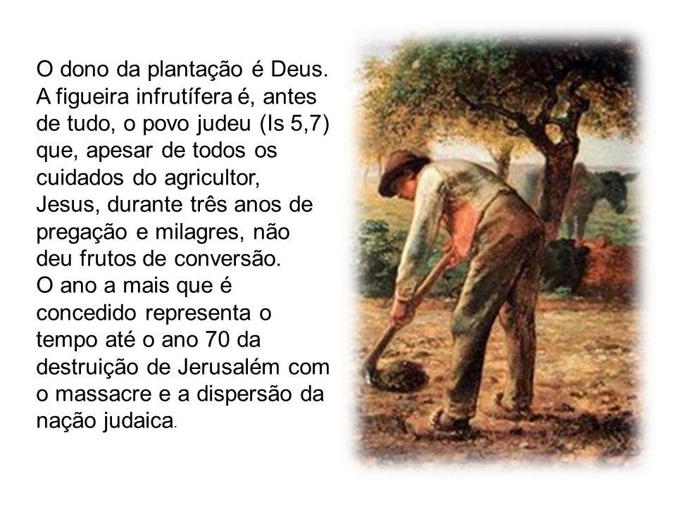 O dono da plantação é Deus