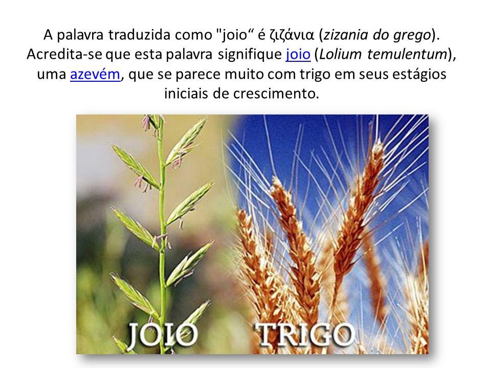 A palavra traduzida como joio é ζιζάνια (zizania do grego)