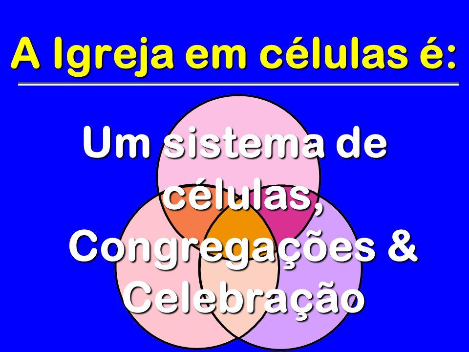 Um sistema de células, Congregações & Celebração