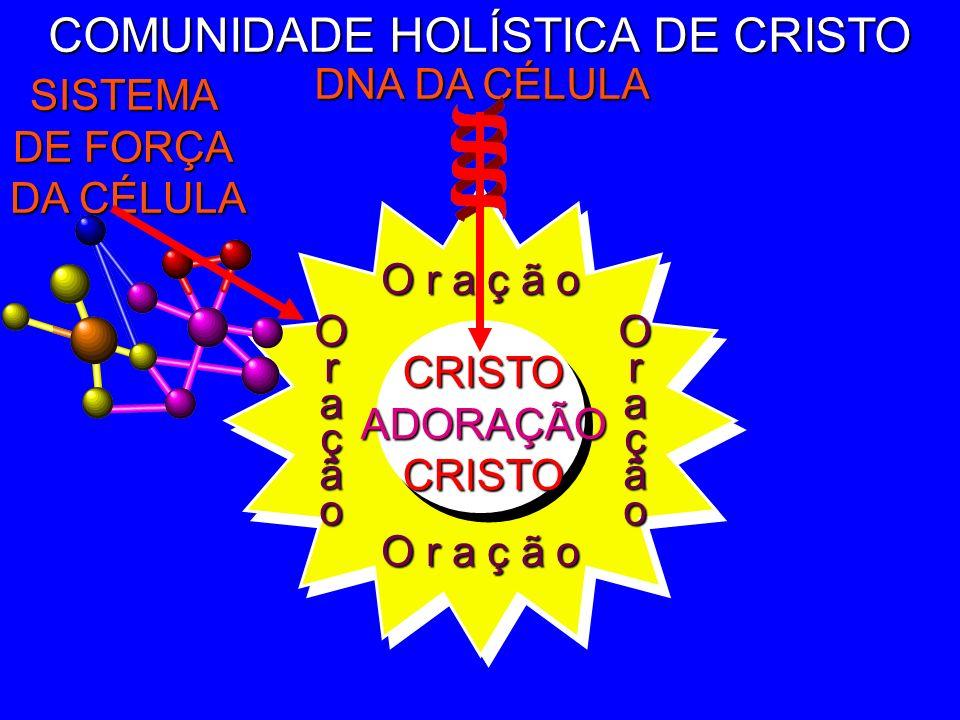 COMUNIDADE HOLÍSTICA DE CRISTO