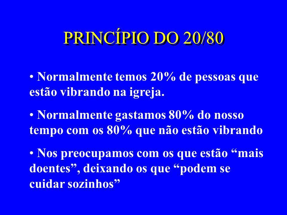 PRINCÍPIO DO 20/80 PRINCÍPIO DO 20/80