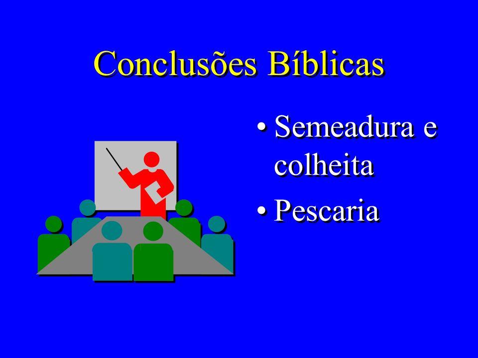 Conclusões Bíblicas Semeadura e colheita Pescaria