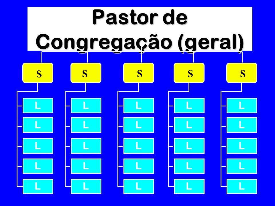 Pastor de Congregação (geral)