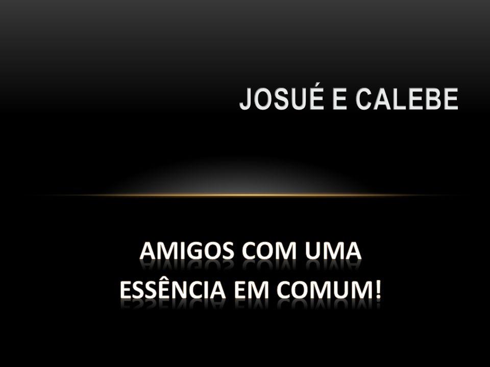 JOSUÉ E CALEBE AMIGOS COM UMA ESSÊNCIA EM COMUM!