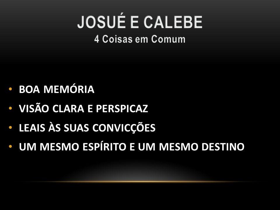 JOSUÉ E CALEBE BOA MEMÓRIA VISÃO CLARA E PERSPICAZ