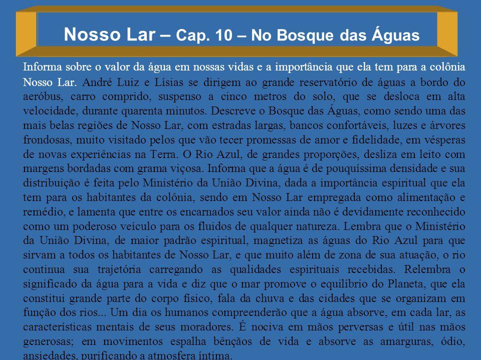 Nosso Lar – Cap. 10 – No Bosque das Águas