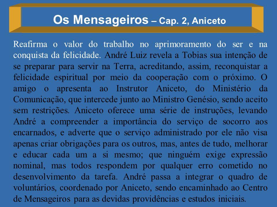 Os Mensageiros – Cap. 2, Aniceto