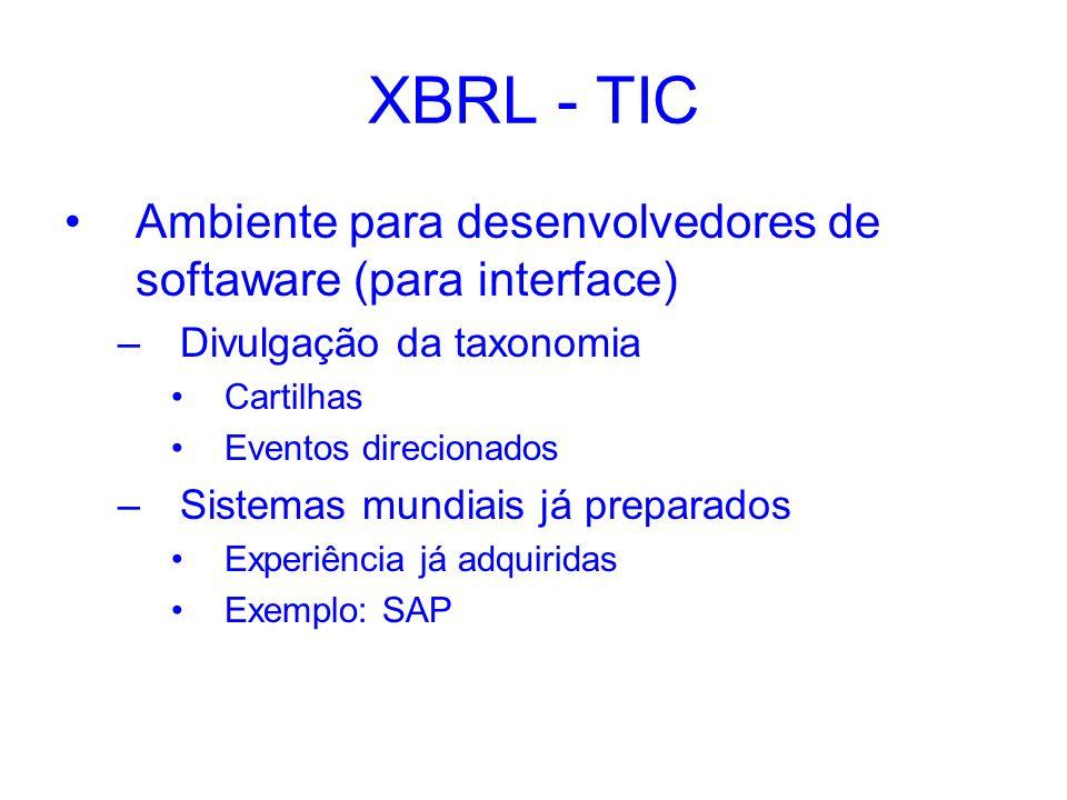 XBRL - TIC Ambiente para desenvolvedores de softaware (para interface)