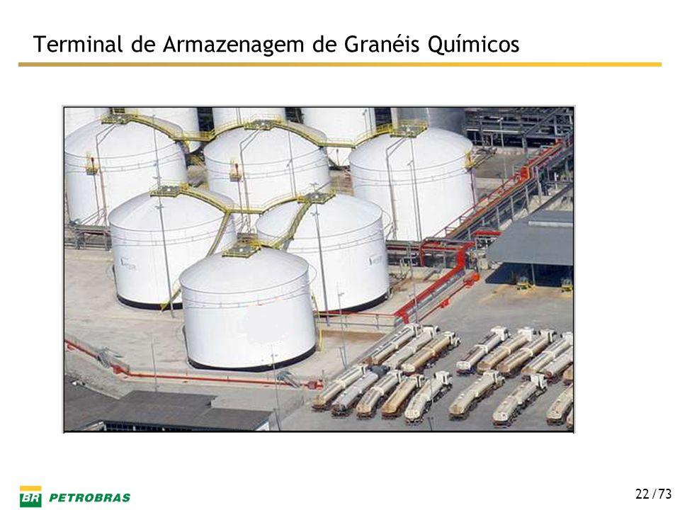 Terminal de Armazenagem de Granéis Químicos
