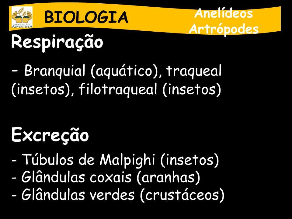 Branquial (aquático), traqueal (insetos), filotraqueal (insetos)