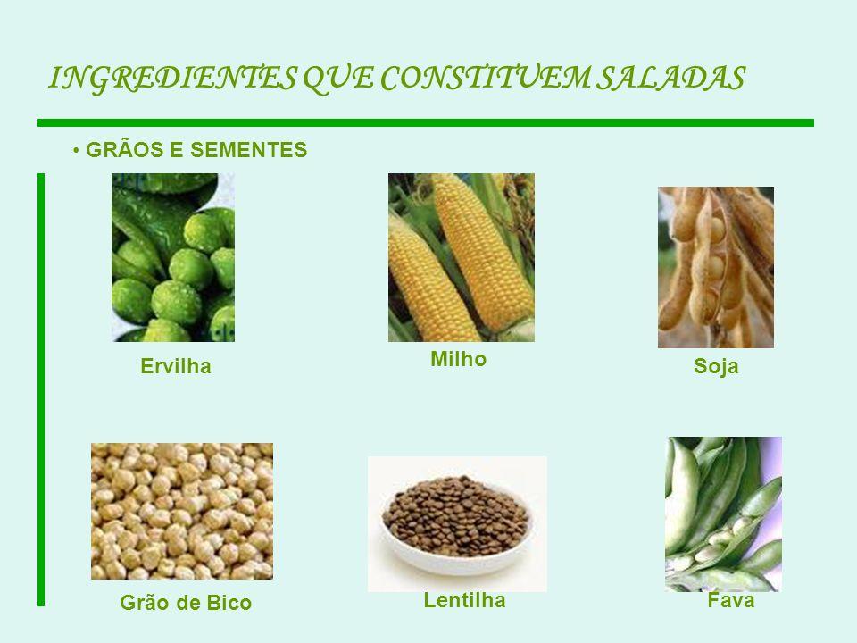 INGREDIENTES QUE CONSTITUEM SALADAS