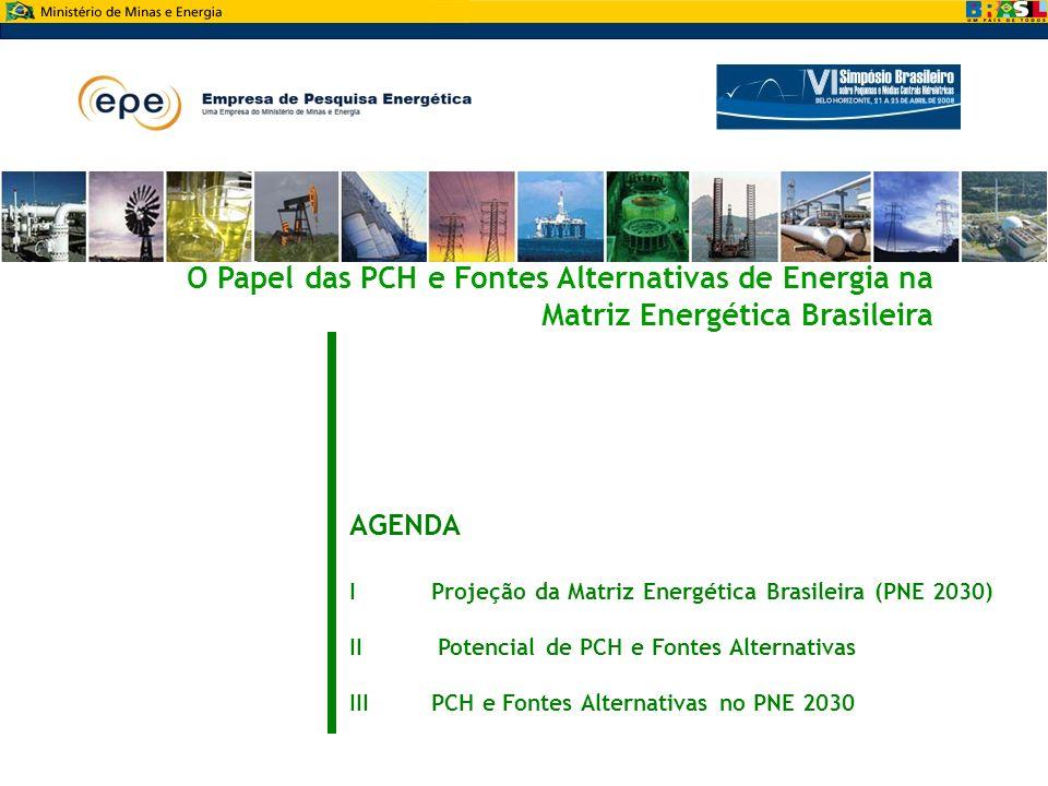 Mesa Redonda: O Papel das PCH e Fontes Alternativas de Energia na Matriz Energética Brasileira