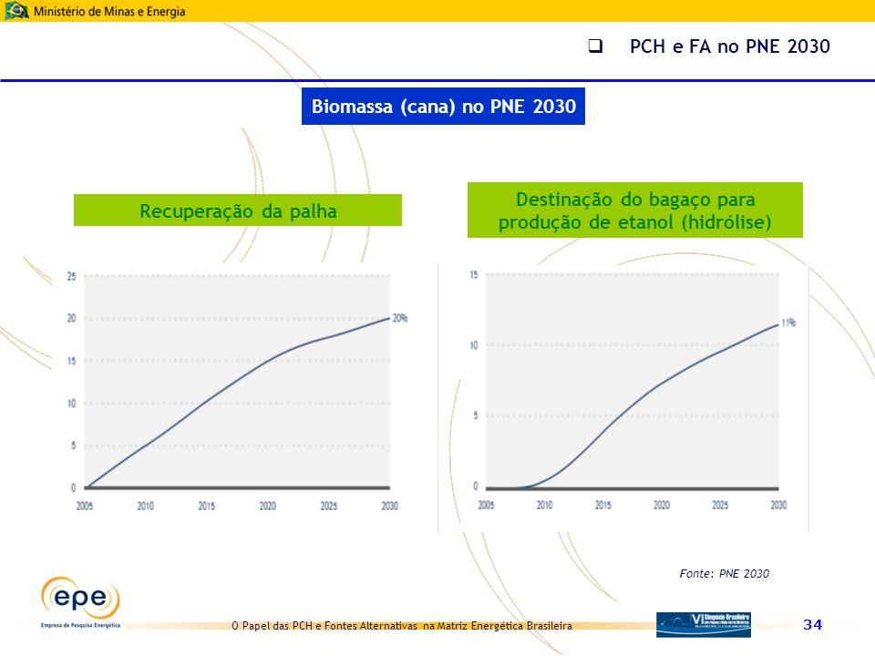 Destinação do bagaço para produção de etanol (hidrólise)