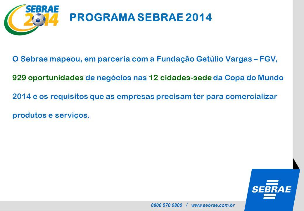 PROGRAMA SEBRAE 2014 O Sebrae mapeou, em parceria com a Fundação Getúlio Vargas – FGV,