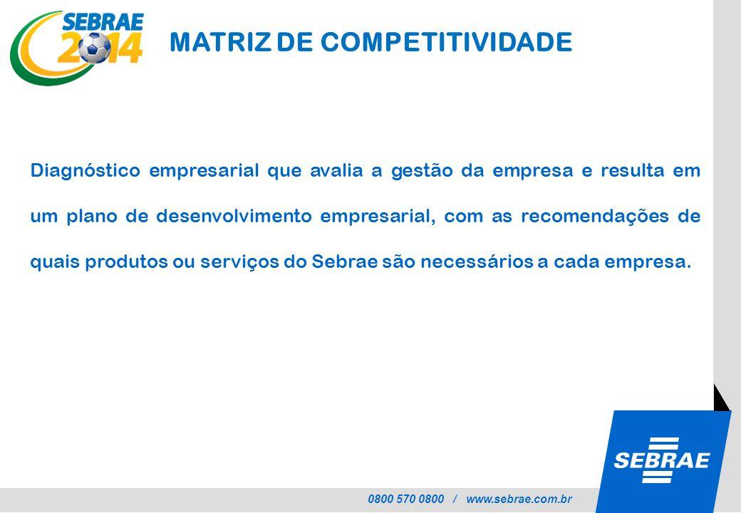 MATRIZ DE COMPETITIVIDADE