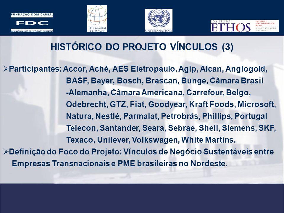 HISTÓRICO DO PROJETO VÍNCULOS (3)