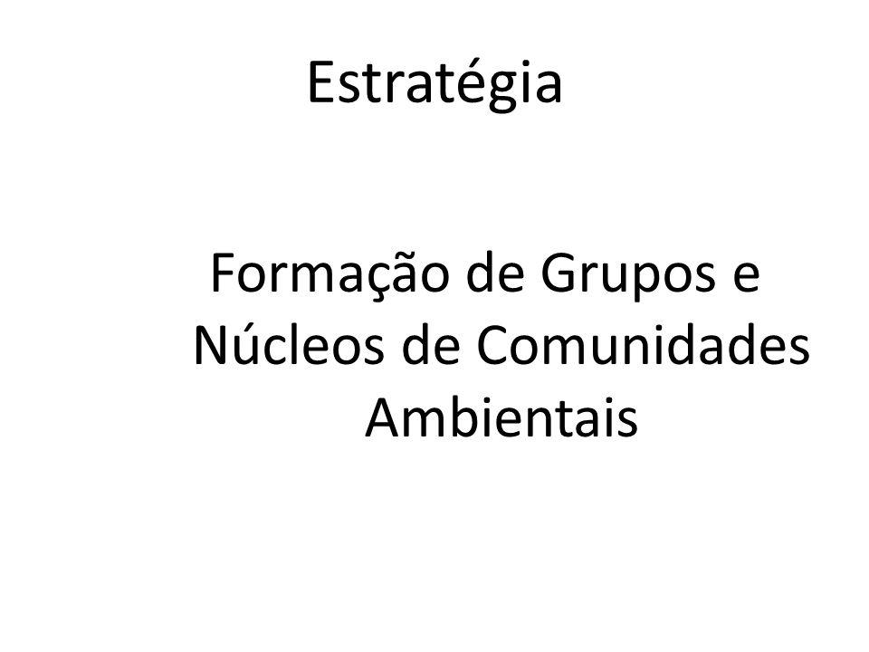 Formação de Grupos e Núcleos de Comunidades Ambientais
