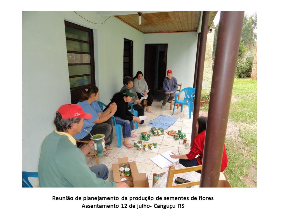 Reunião de planejamento da produção de sementes de flores