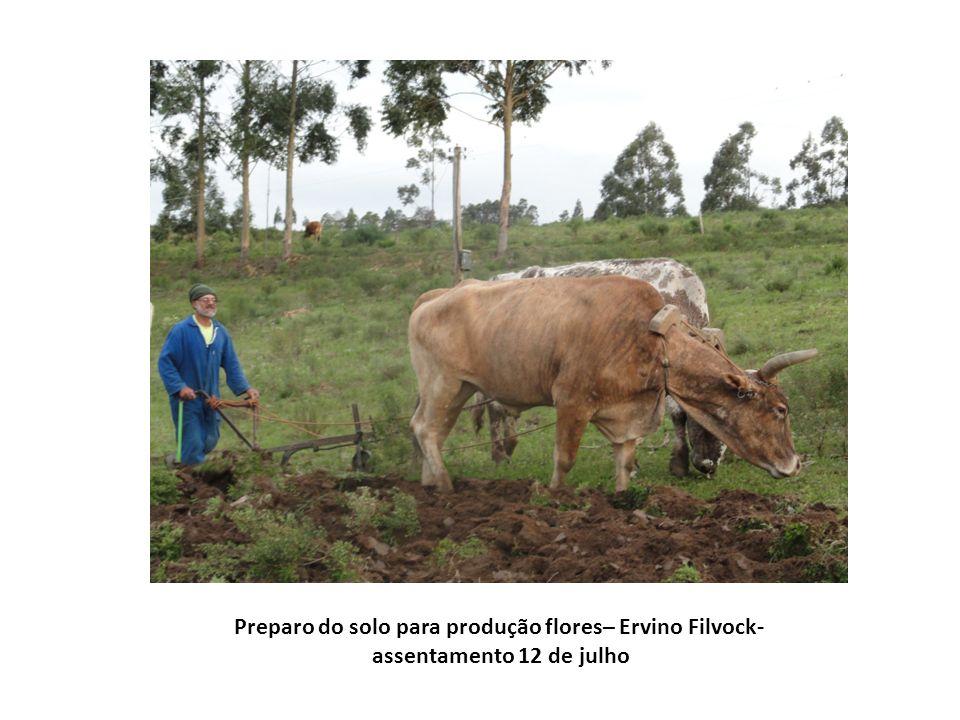Preparo do solo para produção flores– Ervino Filvock-