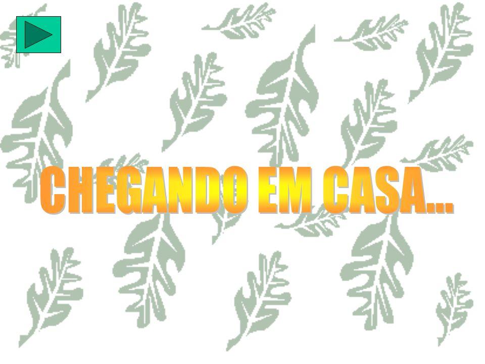 CHEGANDO EM CASA...