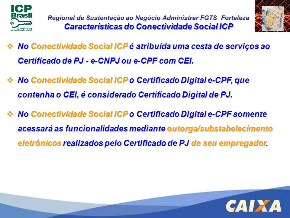 Características do Conectividade Social ICP