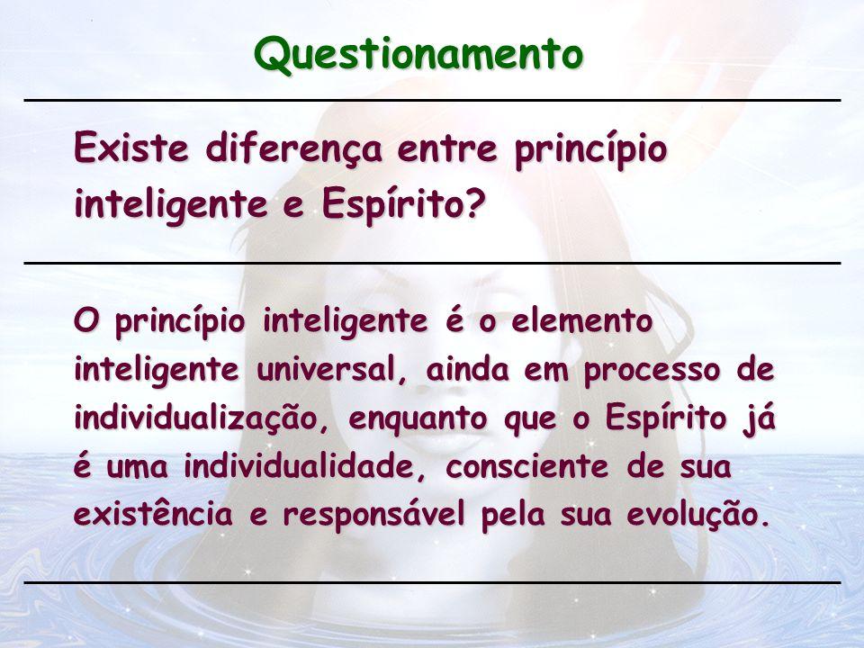 Questionamento Existe diferença entre princípio inteligente e Espírito