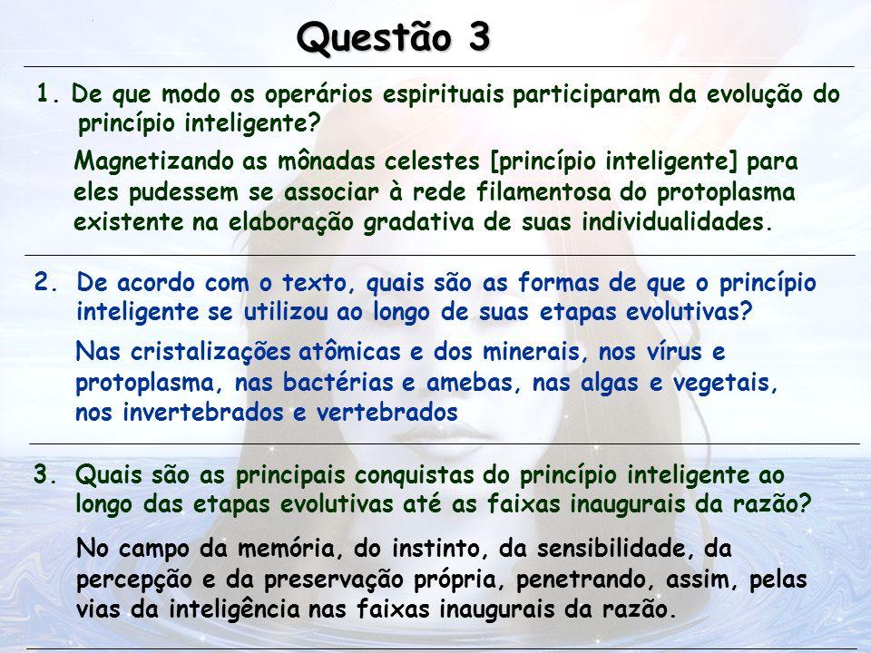 Questão 3 1. De que modo os operários espirituais participaram da evolução do princípio inteligente