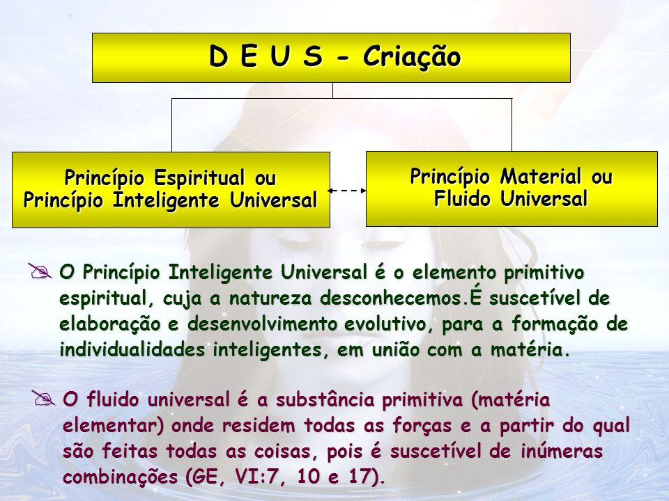 Princípio Espiritual ou Princípio Inteligente Universal