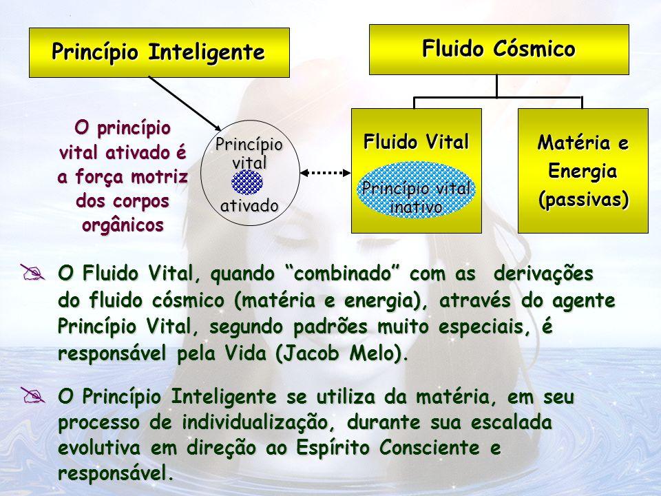 Princípio Inteligente Fluido Cósmico