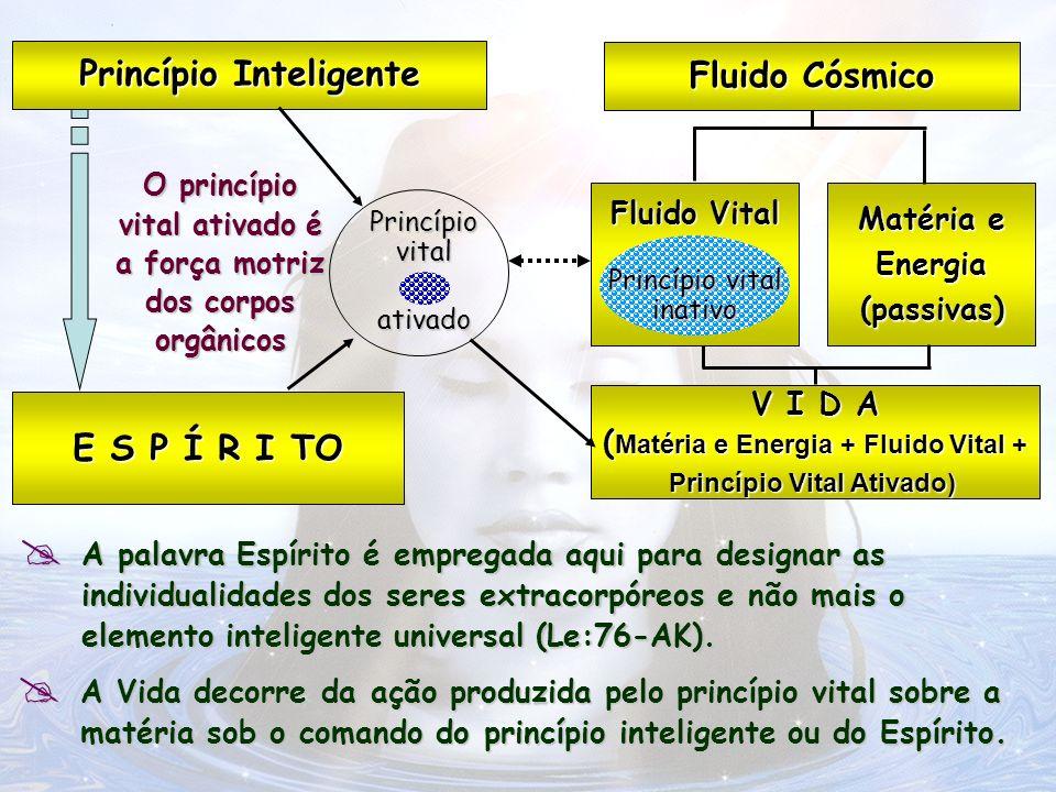 Fluido Cósmico Princípio Inteligente E S P Í R I TO