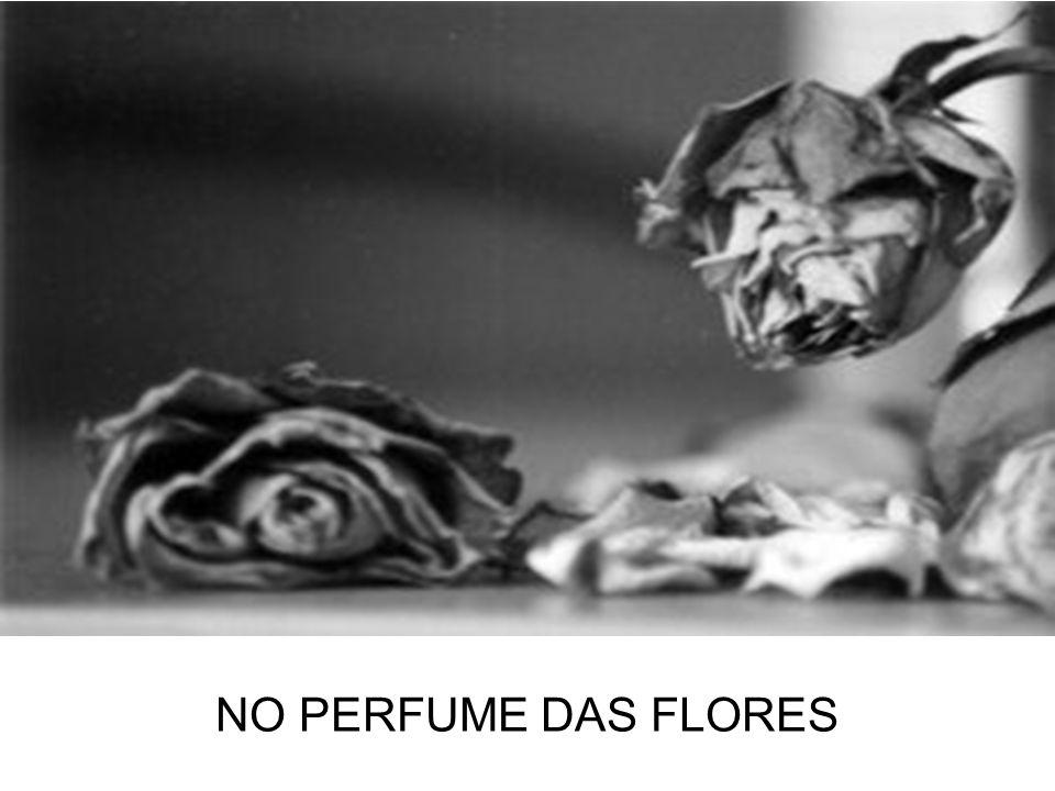 NO PERFUME DAS FLORES
