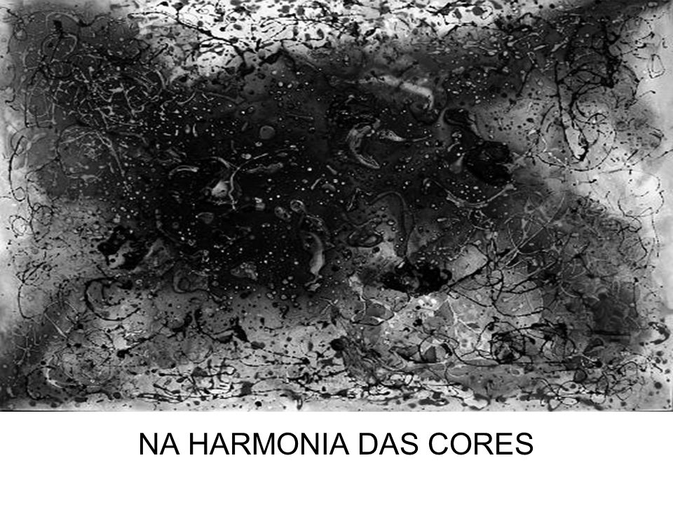 NA HARMONIA DAS CORES