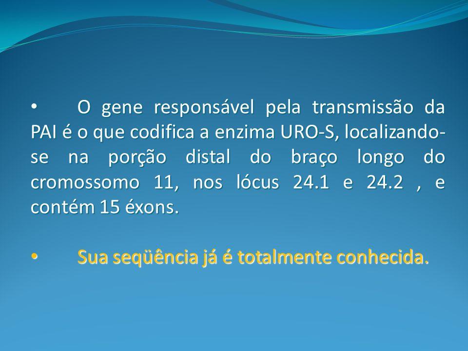 O gene responsável pela transmissão da PAI é o que codifica a enzima URO-S, localizando-se na porção distal do braço longo do cromossomo 11, nos lócus 24.1 e 24.2 , e contém 15 éxons.
