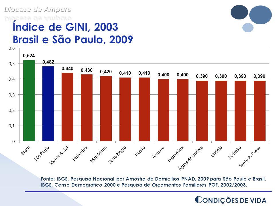 Índice de GINI, 2003 Brasil e São Paulo, 2009 CONDIÇÕES DE VIDA