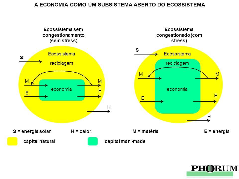 A ECONOMIA COMO UM SUBSISTEMA ABERTO DO ECOSSISTEMA