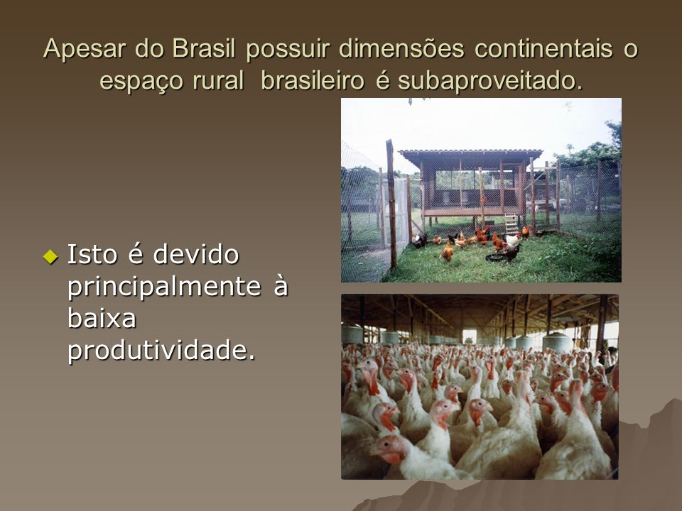 Apesar do Brasil possuir dimensões continentais o espaço rural brasileiro é subaproveitado.