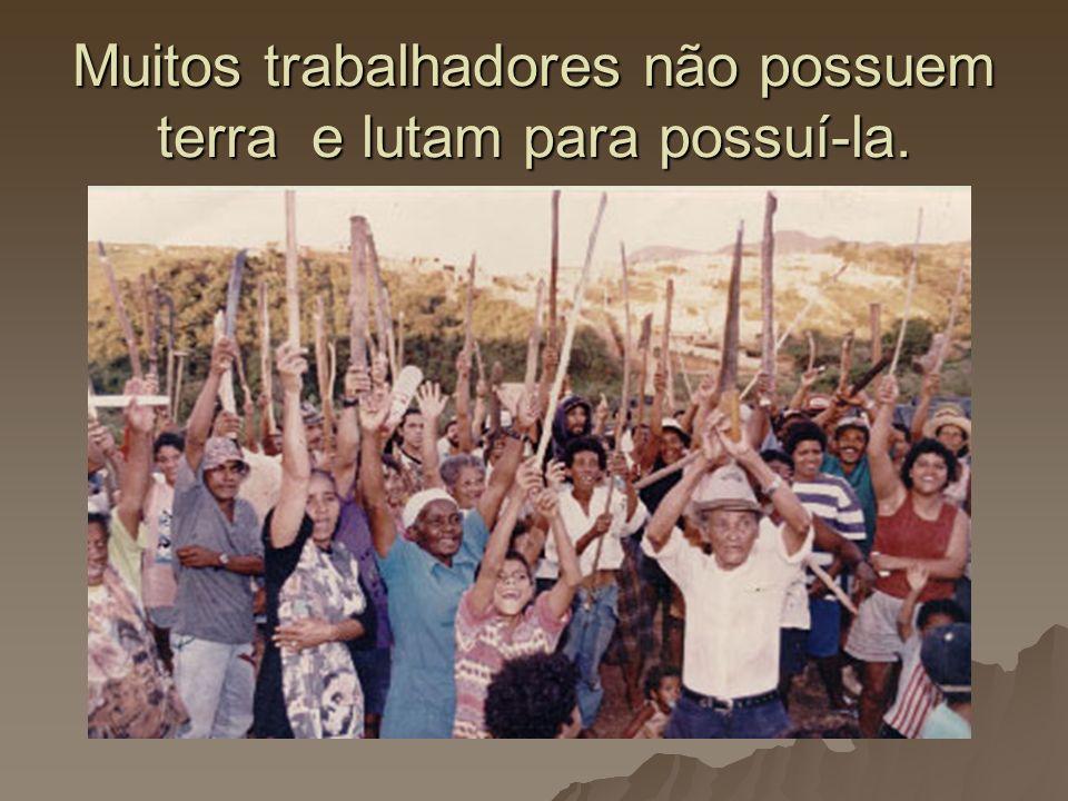 Muitos trabalhadores não possuem terra e lutam para possuí-la.