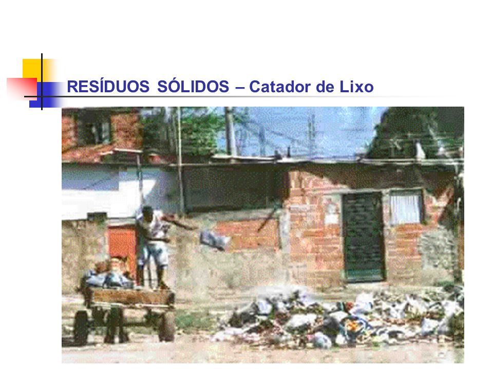 RESÍDUOS SÓLIDOS – Catador de Lixo