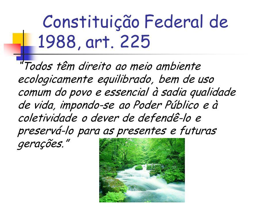 Constituição Federal de 1988, art. 225