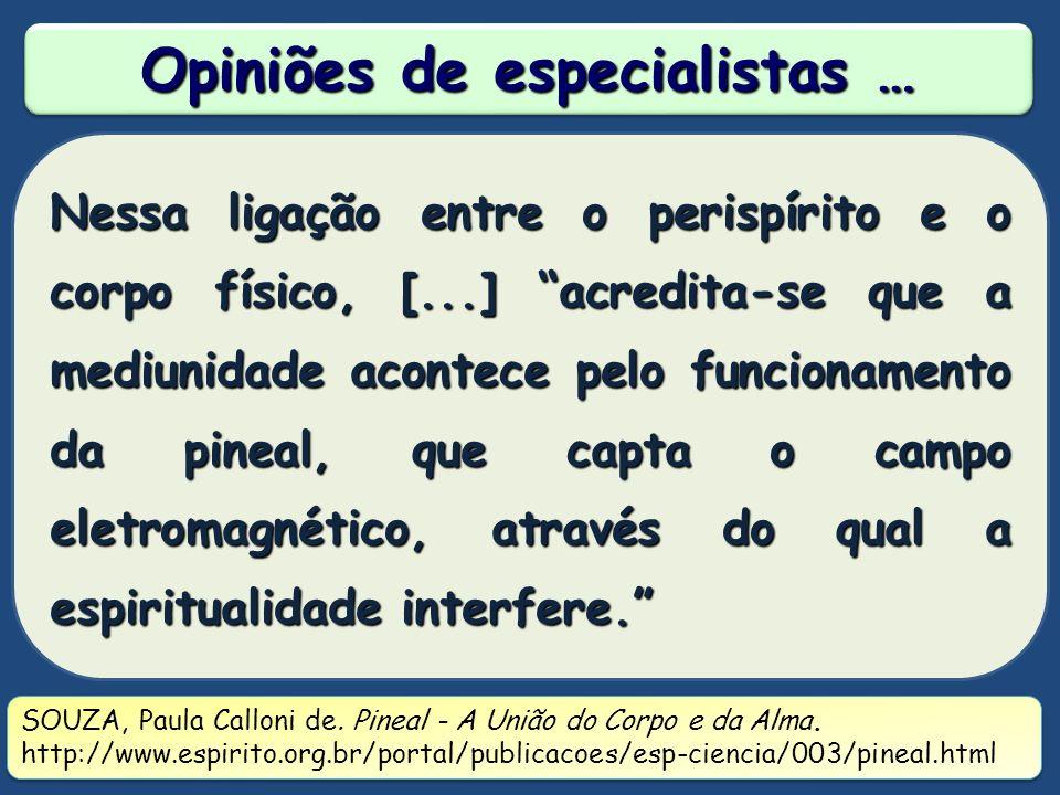 Opiniões de especialistas …