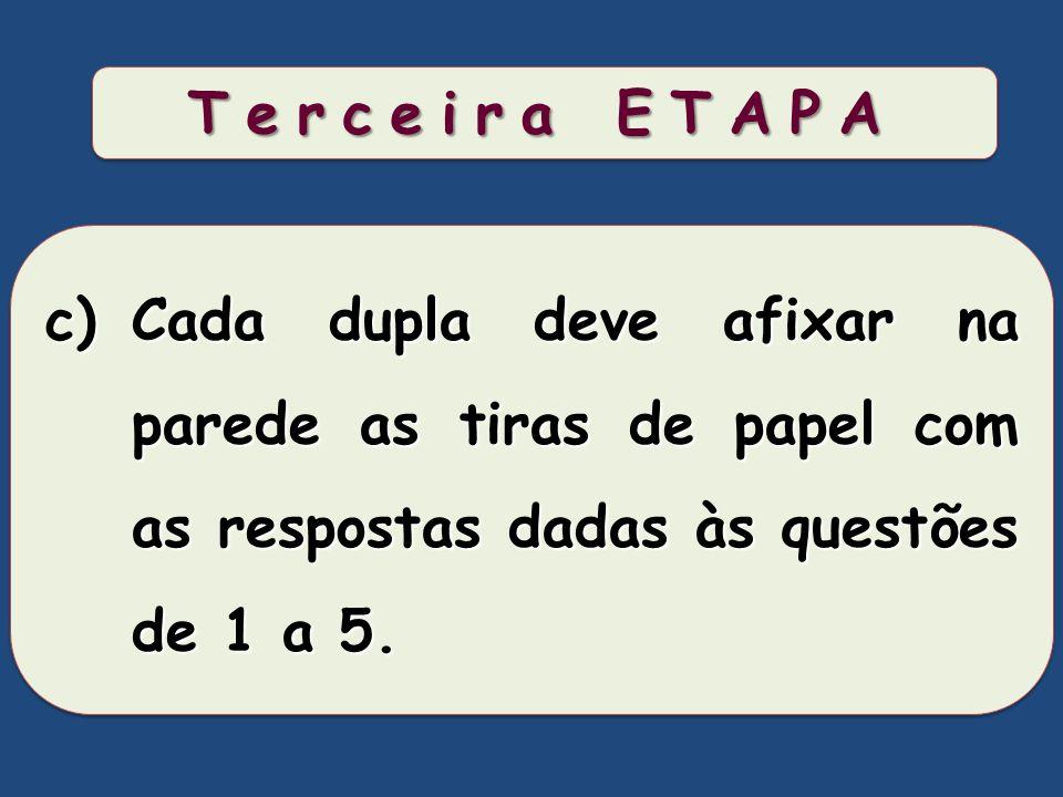 Terceira ETAPA Cada dupla deve afixar na parede as tiras de papel com as respostas dadas às questões de 1 a 5.