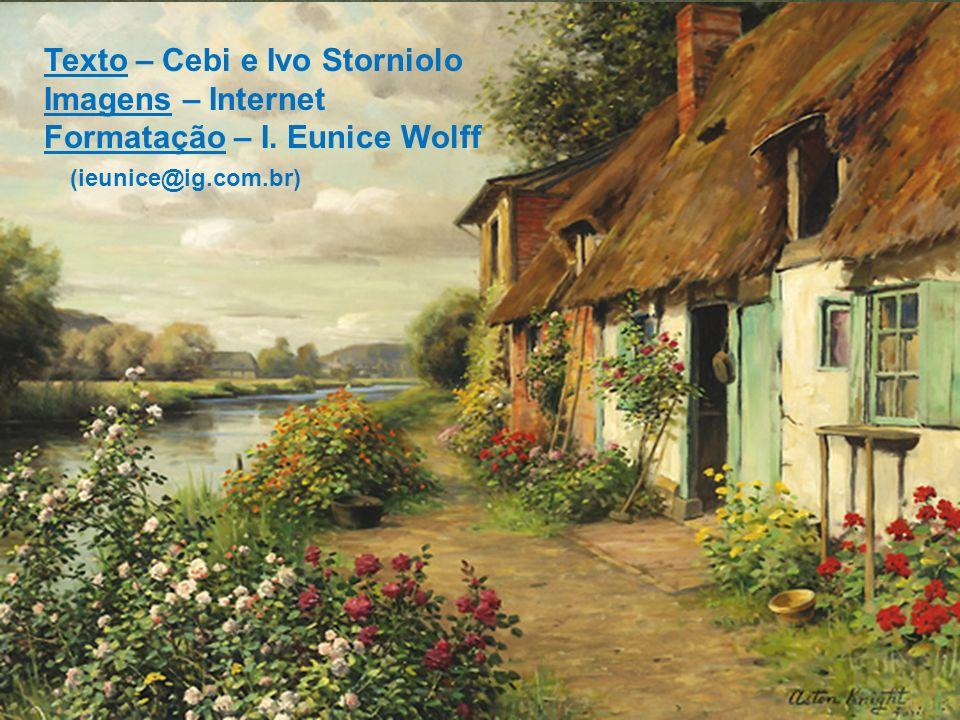 Texto – Cebi e Ivo Storniolo