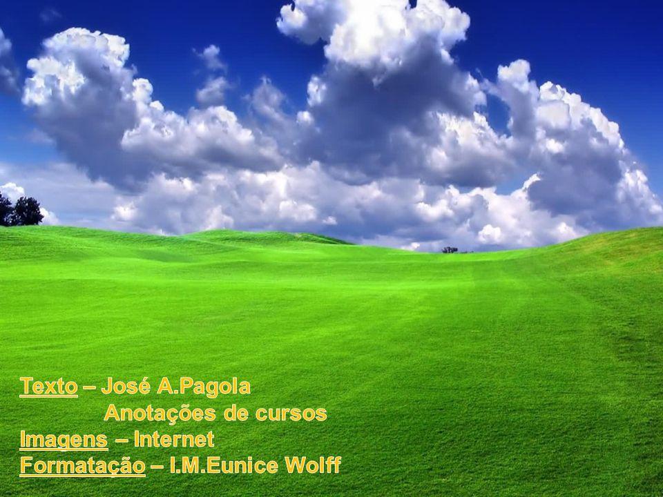 Texto – José A.Pagola Anotações de cursos Imagens – Internet Formatação – I.M.Eunice Wolff